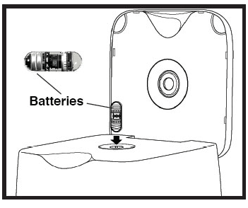 Place the CapsoCam Plus capsule into the CapsoAccess System with the batteries up.